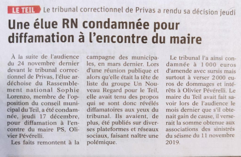 Condamnation d'une élue locale pour diffamation publique (TC – 17.12.2020)